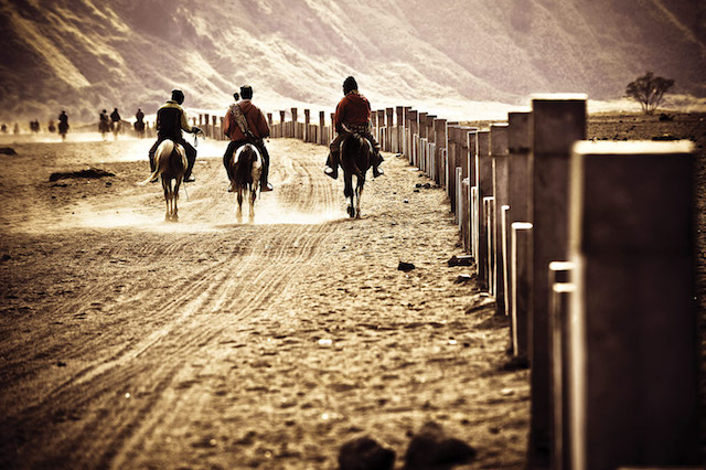 horsemen-riding-in-Desert,-going-back-to-home,-java-indonesia