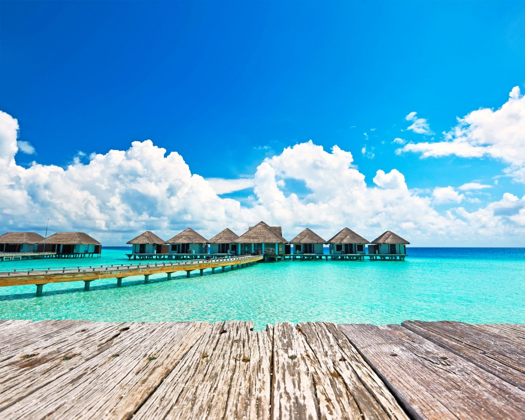 Maldives_nextisland_tropicallife_3