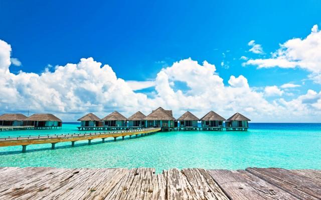 Maldives_nextisland_tropicallife_3