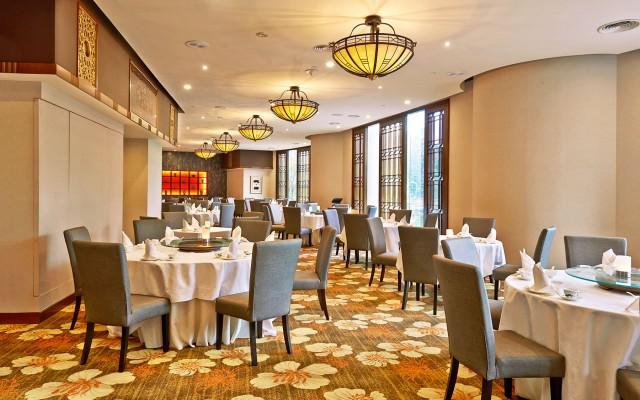 rklh-dynasty-restaurant-copy