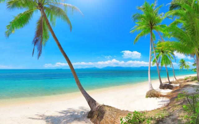 Bang-Po-beach,-Koh-Samui,-Thailand_tropicallife