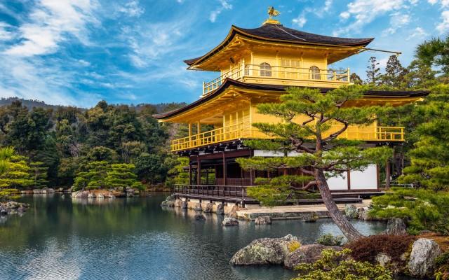 Golden-Pavilion_tropicallife